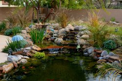 Ponds & Streams #001 by Allure Pools and Outdoor